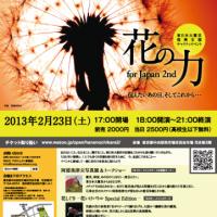 flyer-361x512